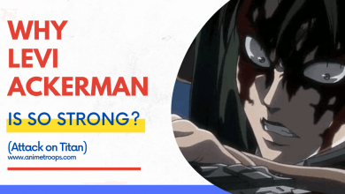 Why Levi Ackerman is so strong