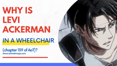 why is Levi Ackerman in a wheelchair at the end of Shingeki no Kyogin manga?